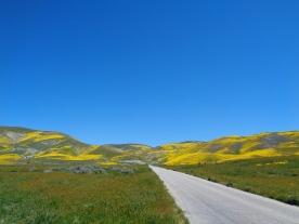 7-Mile Road