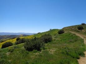 Caliente Ridge Trail