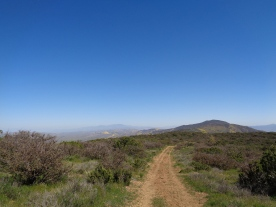 Caliente Ridge Trail