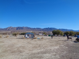 Furnace Creek Campsite