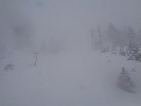 Snowy Gunbarrel