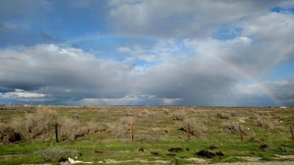 Central Valley Rainbow