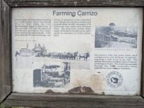 Carrizo98