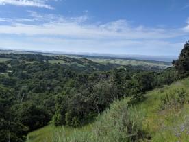 Monterey Bay Views