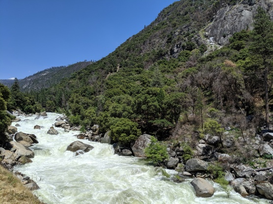 Raging Merced River