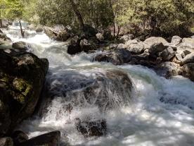 Yosemite99