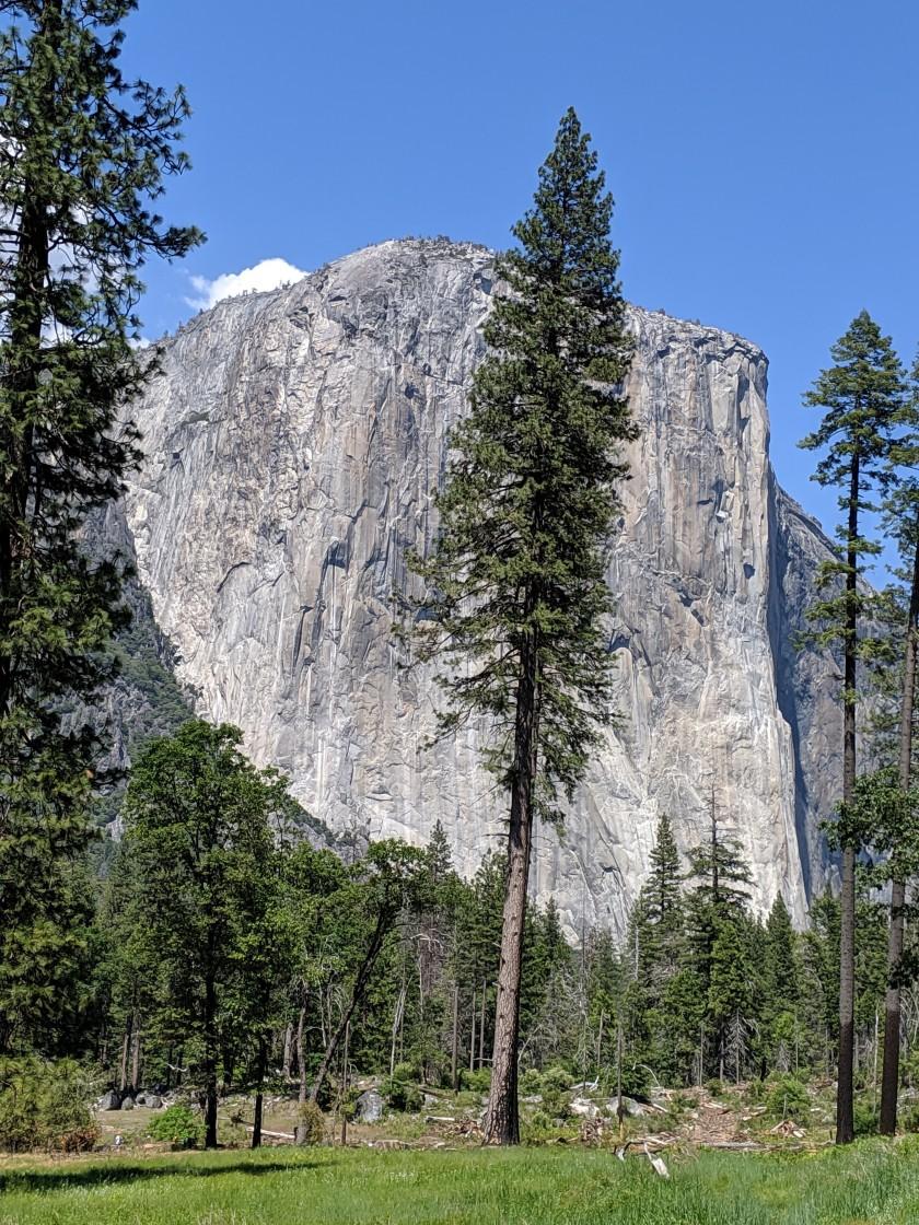 Yosemite91