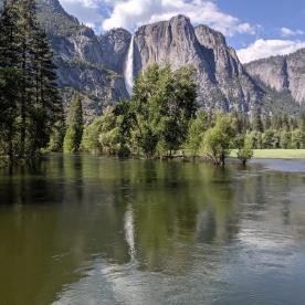 Yosemite75