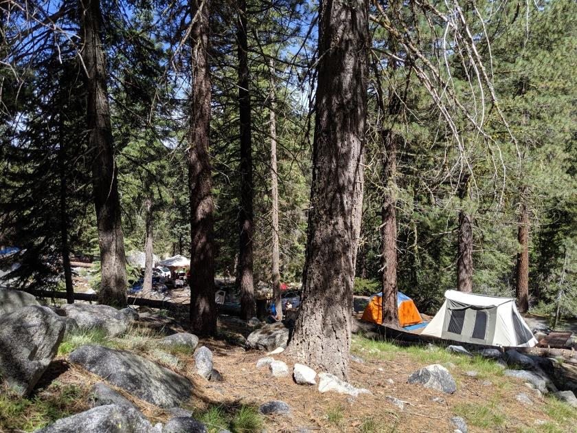 SequoiaNationalPark59