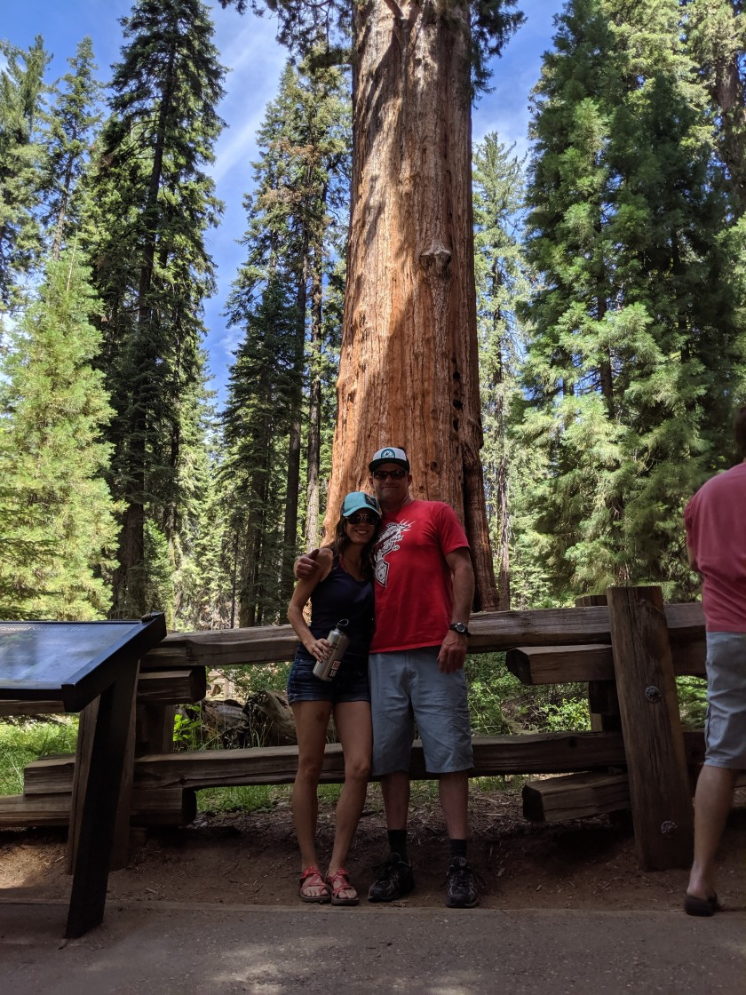 SequoiaNationalPark75