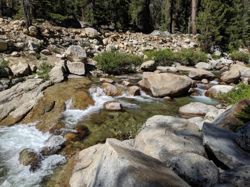 SequoiaNationalPark102
