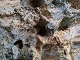 SequoiaNationalPark113