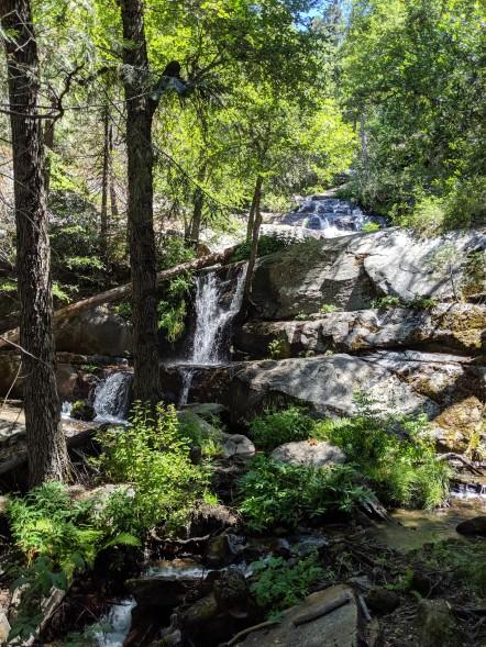 SequoiaNationalPark33