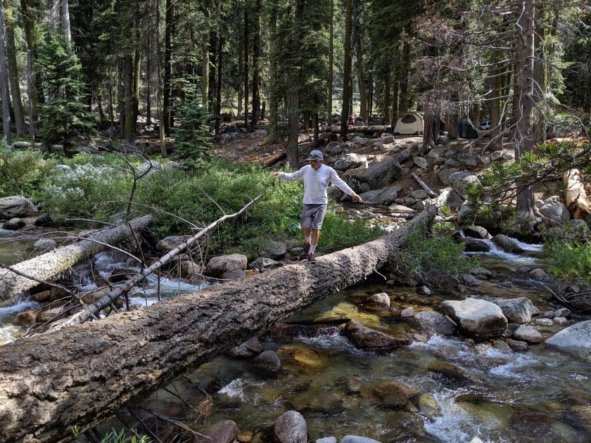 SequoiaNationalPark40