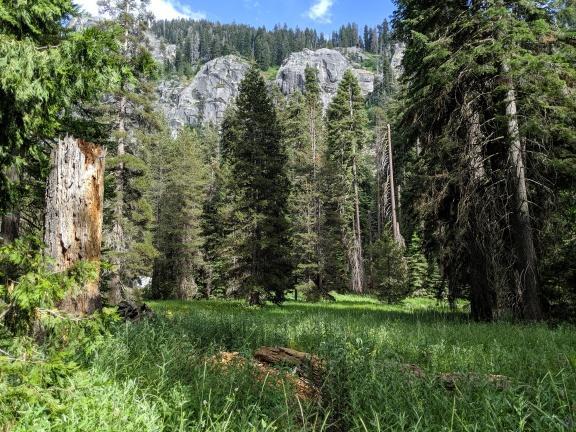 SequoiaNationalPark46