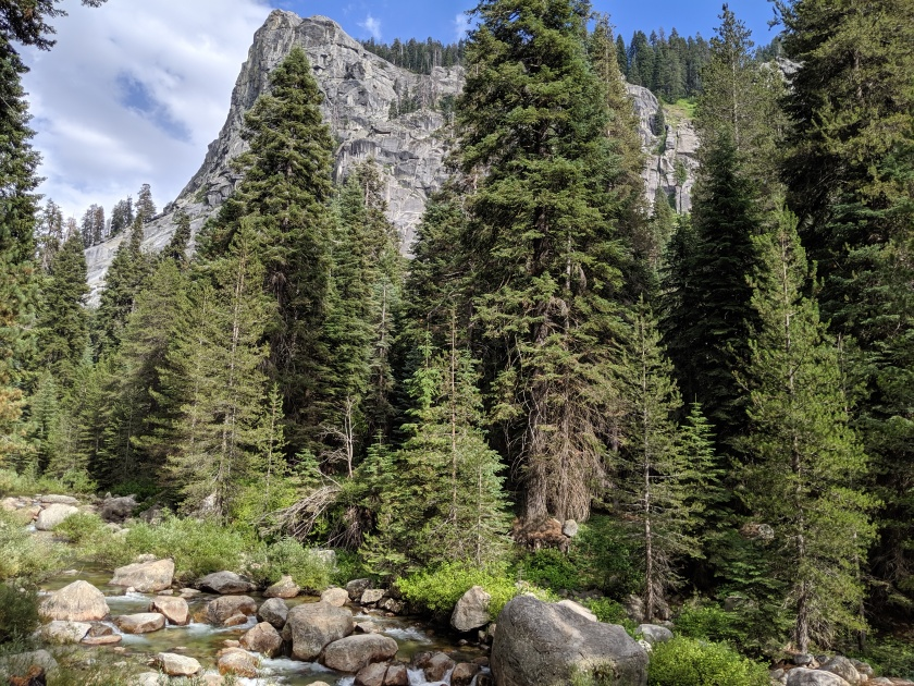 SequoiaNationalPark47