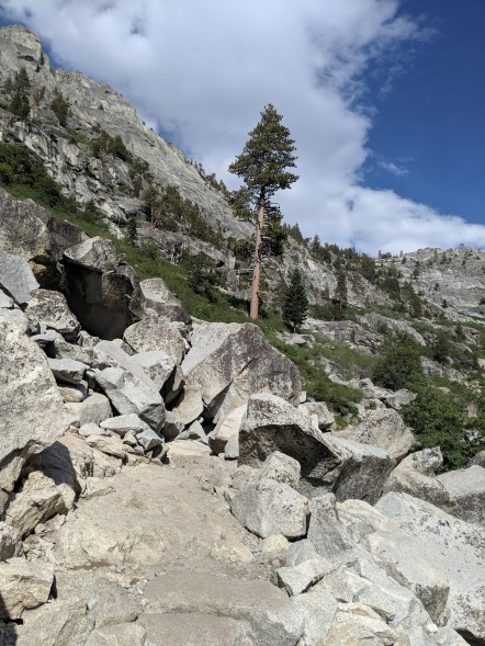 SequoiaNationalPark19