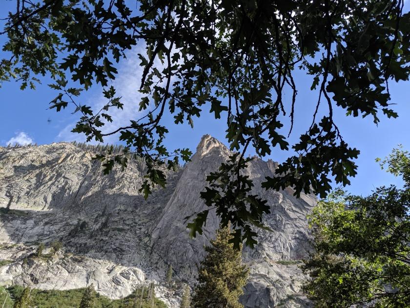 SequoiaNationalPark27