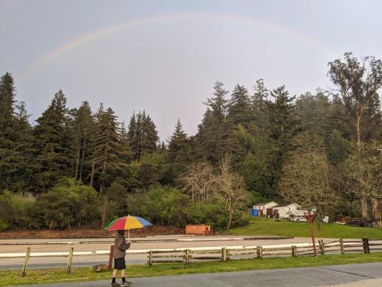 Ron & Rainbow
